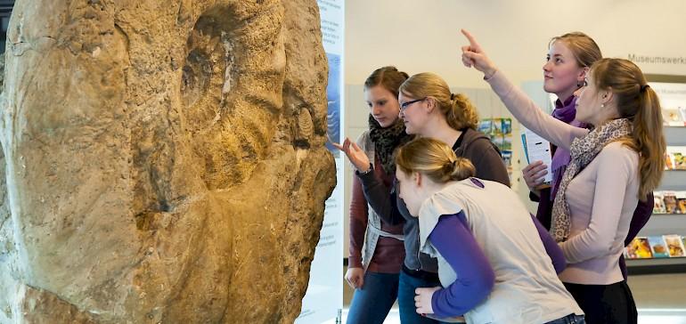 Münster bietet kulturinteressierten eine Vielzahl an Museen von Naturkunde bis Lackkunst