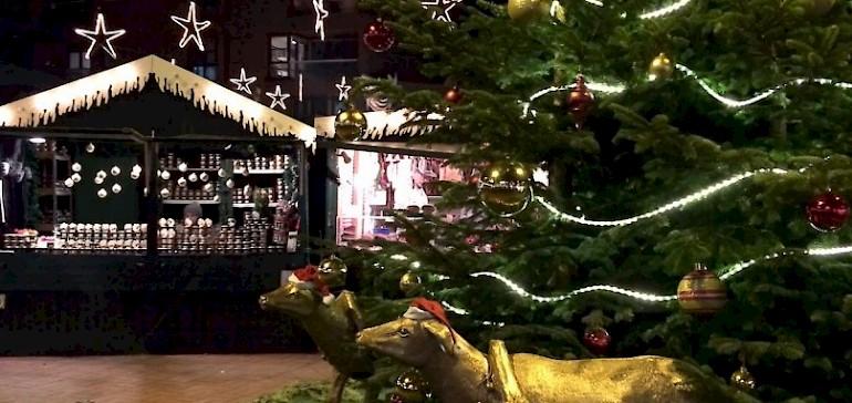Fünf Weihnachtsmärkte in Münster