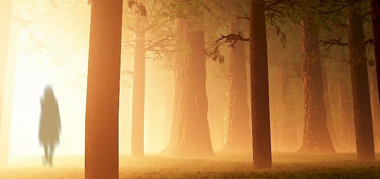 Das Münsterland ist ein mystischer Ort mit vielen gruseligen Sagen und Geschichten