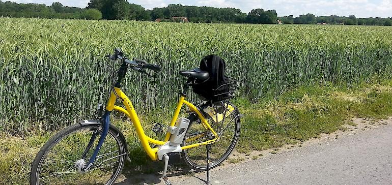 Mit dem Rad durchs Münsterland