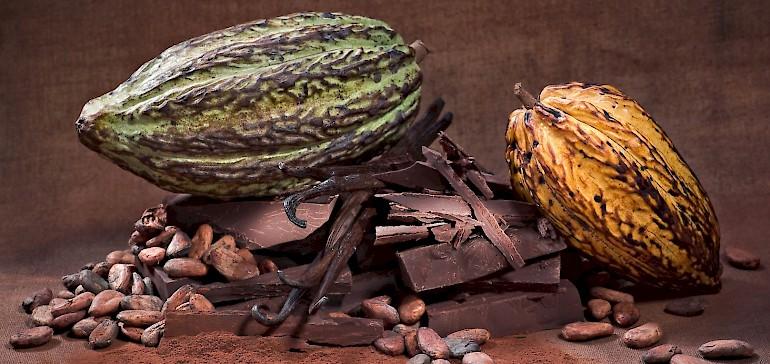 Wie gesund ist Schokolade? Gehört die süße Sünde vielleicht zu den trendigen Superfoods?