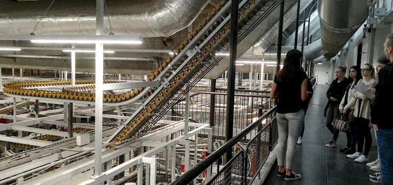 Riesige Maschinen in der Druckhalle