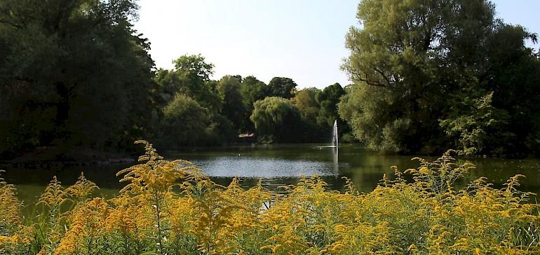 Schöner See im Lund