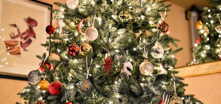 Der Weihnachtsbaum gehört zu den Weihnachtsbräuchen in Deutschland